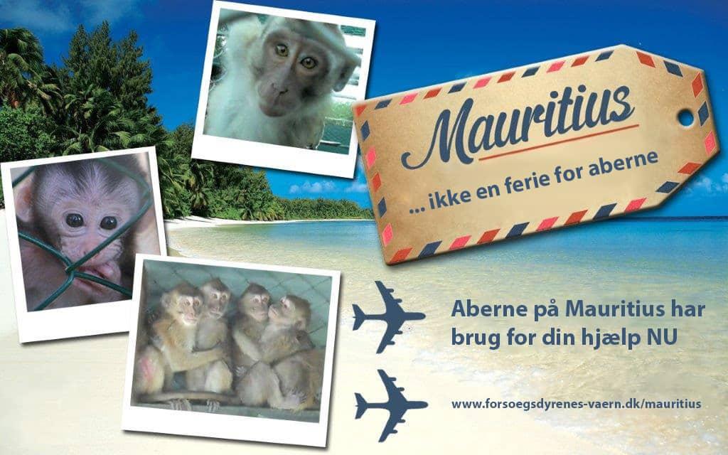 Tourism Awareness campaign