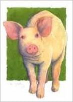 5 kort, gris med kant Forsøgsdyrenes Værn