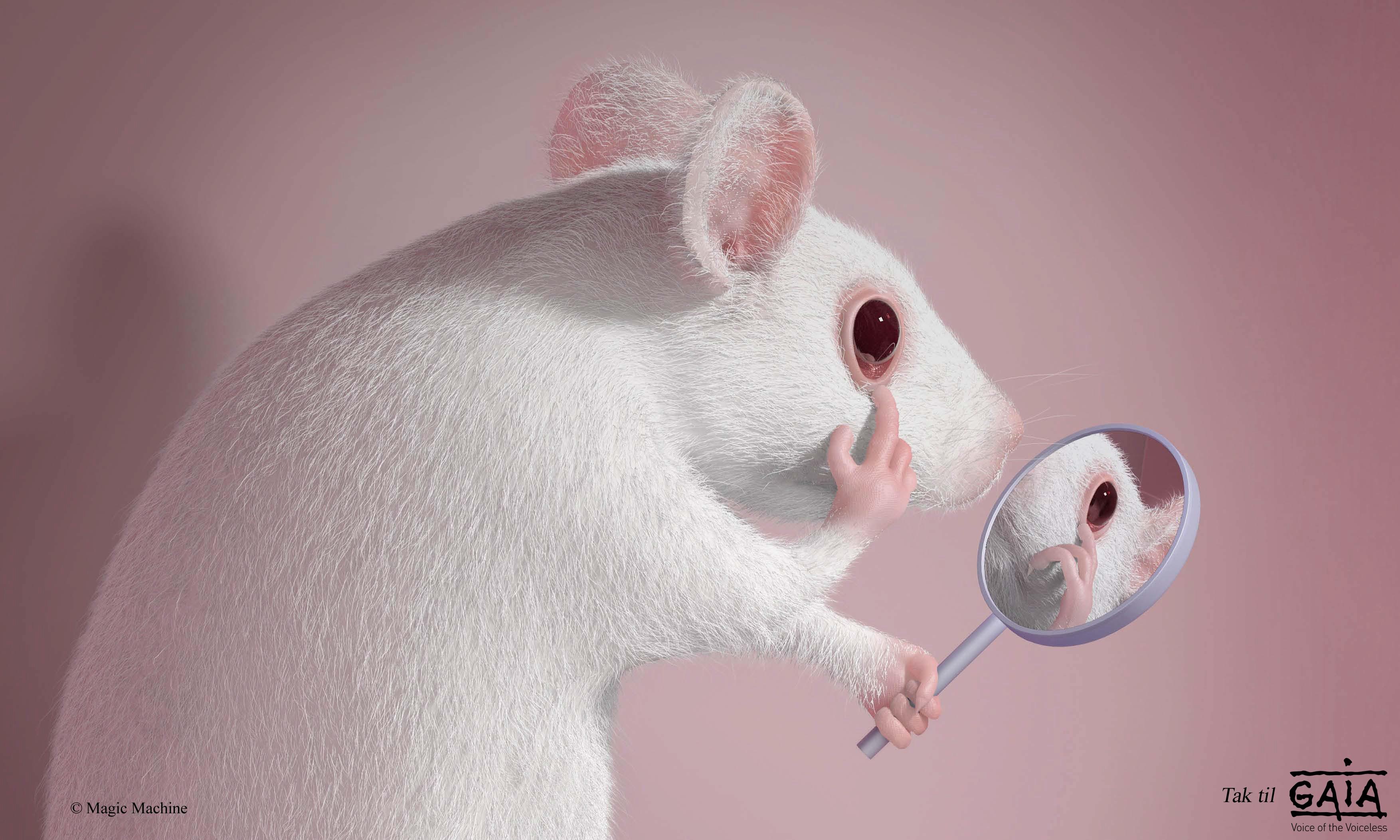 Gaia mouse-beskåret med tak og logo2