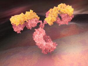 antistoffer forsøgsdyrenes værn