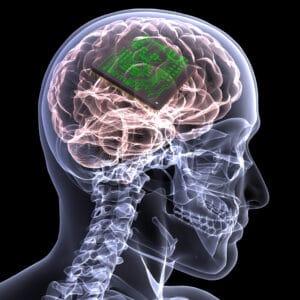 forsøgsdyrenes værn hjernechip testes på dyr